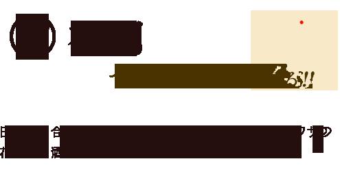 福岡でお酒の魅力に迫る!!日本酒に合うグルメを探す旅!まずは、日本酒会ウワサの花札でお酒が飲めるお店!?「住吉酒販」さんへ