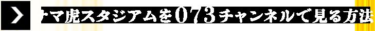 「ナマ虎スタジアム」を073チェンネルで見る方法