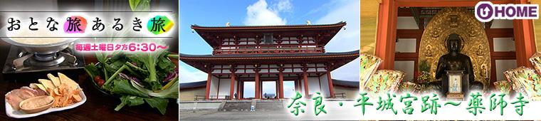 [2021.2.27]第577回「奈良・平城宮跡~薬師寺」