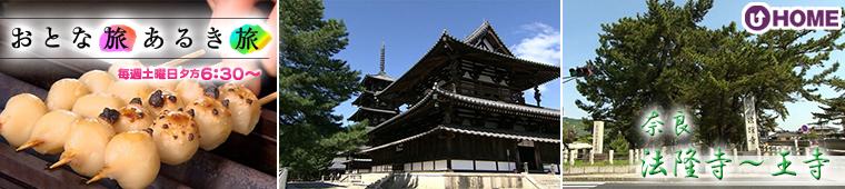 [2021.5.22]第589回 奈良・法隆寺~王寺