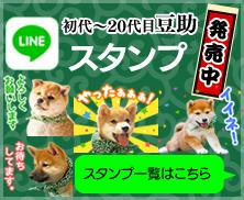 初代~20代目豆助LINEスタンプ発売中!